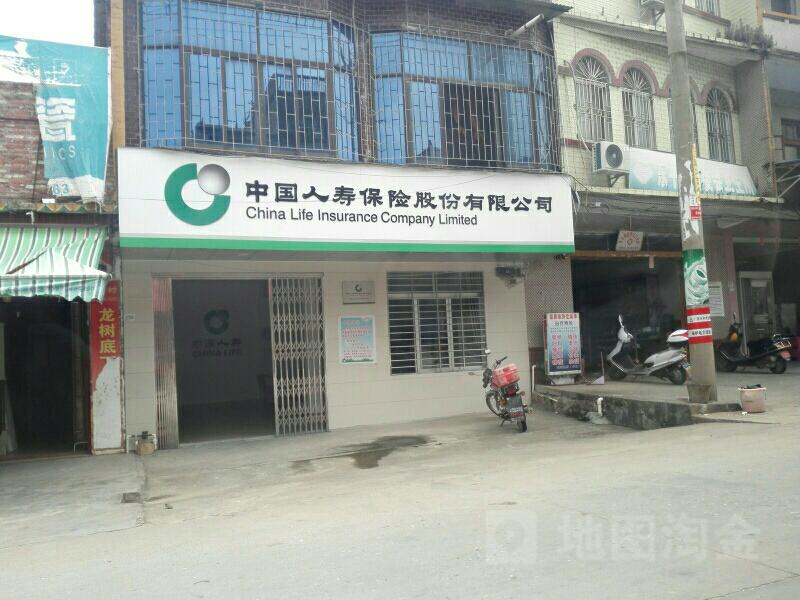 中国人寿(东平营销部)