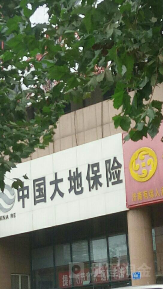 大地保险(长清支公司)