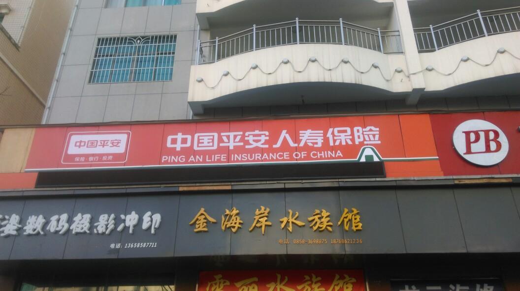 中国平安人寿(贵州分公司盘县营销服务部)
