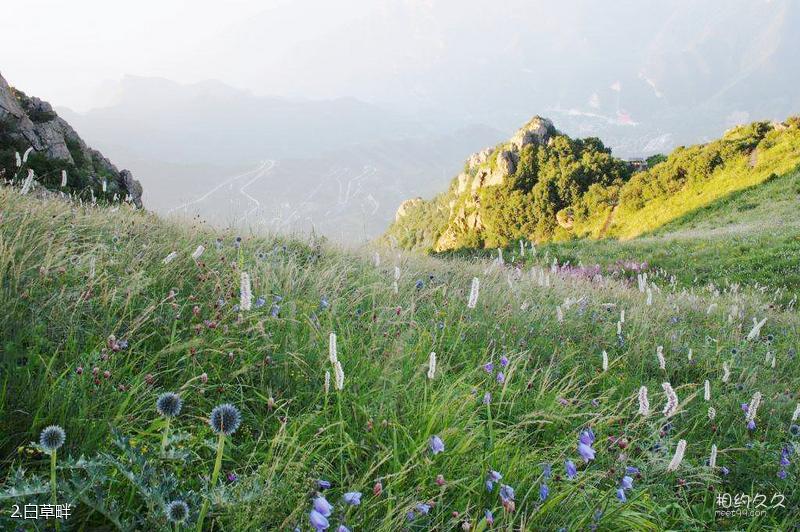 北京白草畔自然风景区