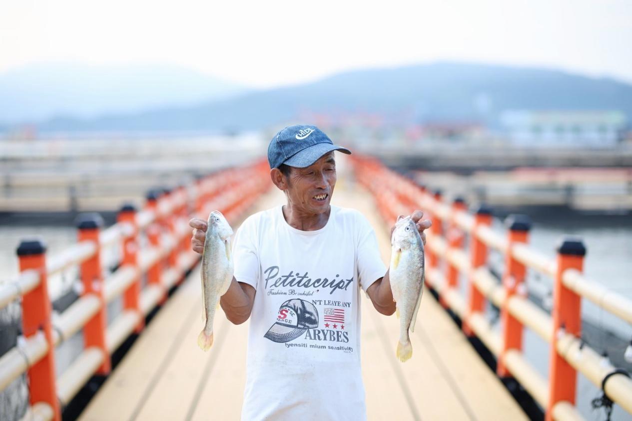 """宁德黄花鱼产业带备战京东618:陈宗蒲的""""三去黄花鱼""""圈粉忙"""